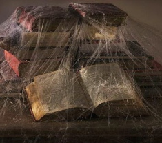 Old_Books_Covered_in_Cobwebs_700-00085284