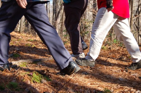 walking-feet-1382029
